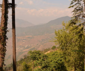 Dhanolti / Dhanaulti