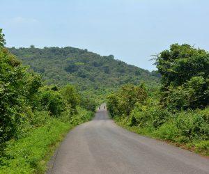 Rural Goa Drive